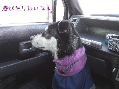 2006_0209j.jpg