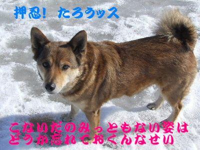 2006_0225d.jpg