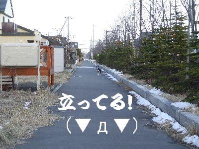 2006_0417f.jpg