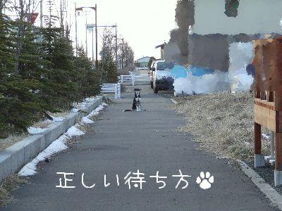 2006_0417h.jpg