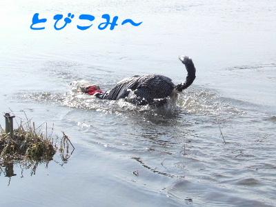 2006_0428b.jpg