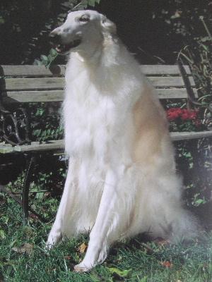 2006_0501a.jpg