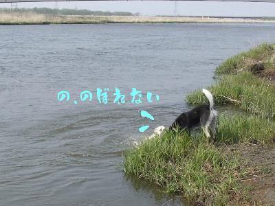 2006_0518a.jpg