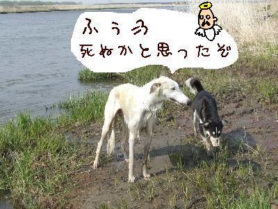 2006_0518c.jpg