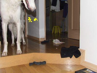 2006_0617a.jpg