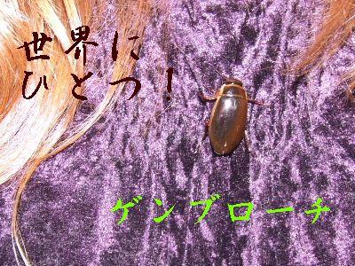 2006_0702b.jpg