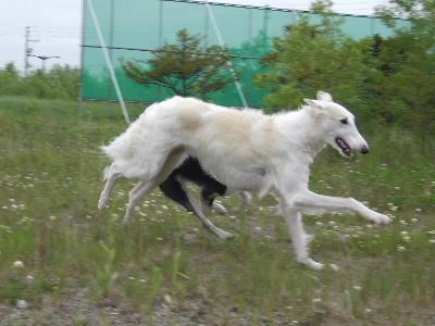 2006_0708f.jpg