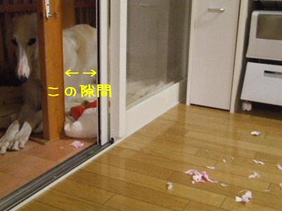 2006_0923f.jpg