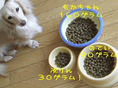 2006_1213b.jpg