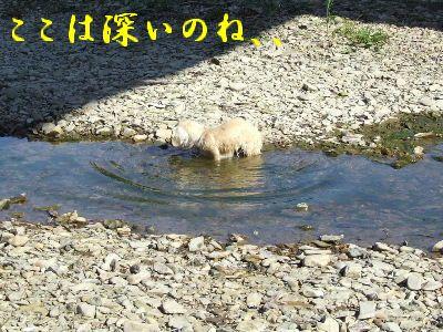2007_0820(080).jpg