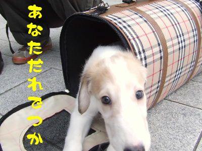 2007_0909(003).jpg