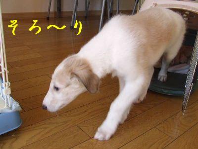 2007_0909(010).jpg
