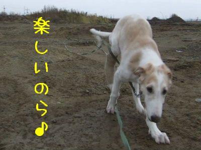 2007_1029(022).jpg