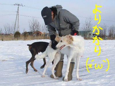 2008_0131(012).jpg