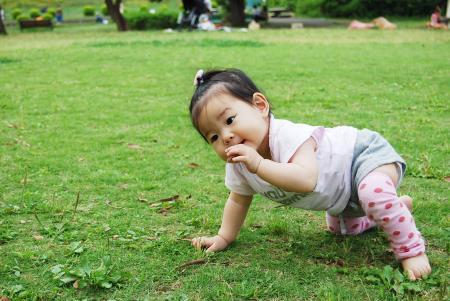 芝生で 2