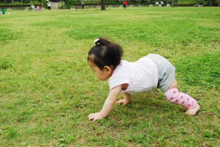 芝生で 3