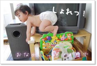 箱入り娘 2