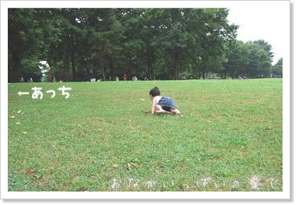 公園 11