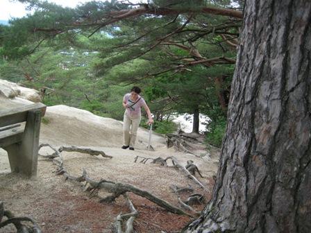 2008昇仙峡 035