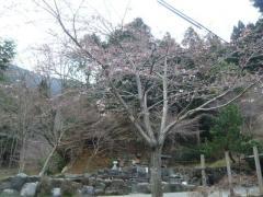 0408mizu2.jpg