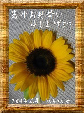暑中お見舞い2008