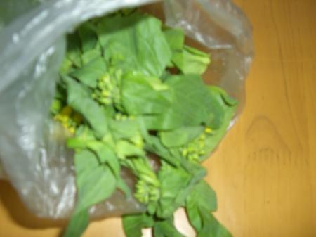 有機農野菜 015