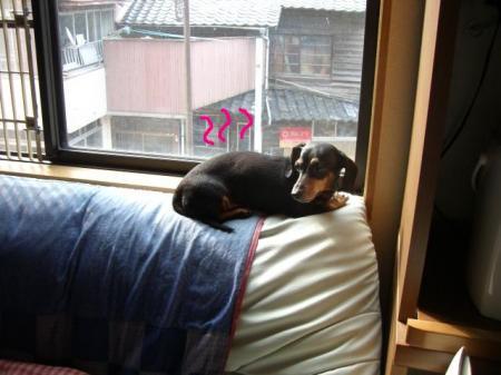 窓 004