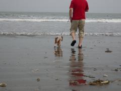 パパに連れられて海へ