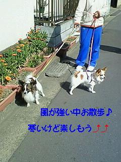 風の散歩1