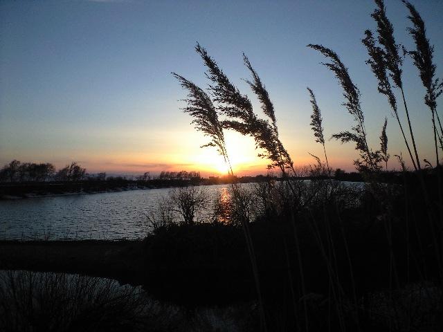 4_2の夕陽