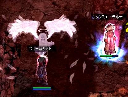 20080419gazou.jpg
