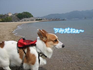 海だねぇ~
