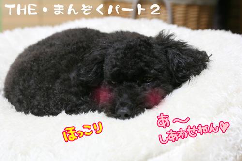 the満足パート2♪
