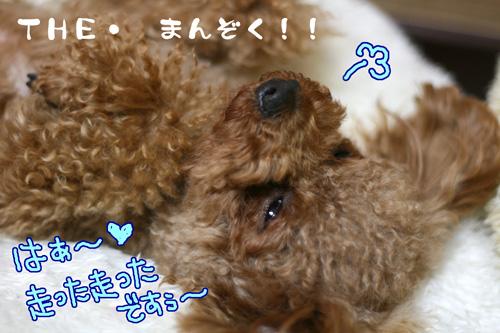 the-満足♪