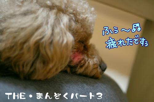 the満足パート3♪