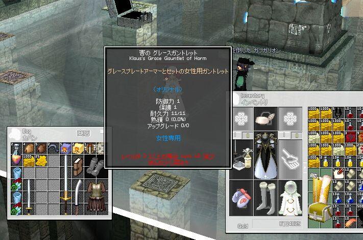 mabinogi_2006_11_25_003.jpg