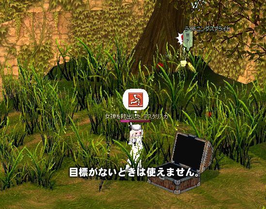 mabinogi_2007_01_20_026.jpg