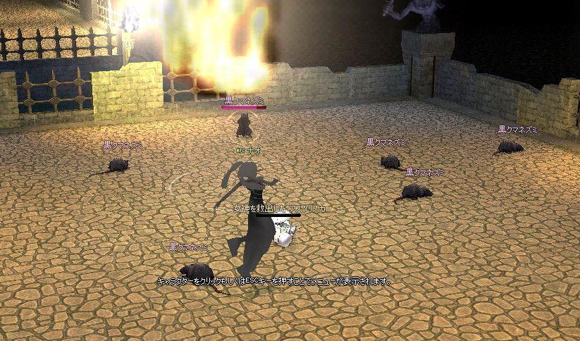 mabinogi_2007_01_29_021.jpg