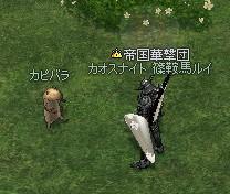 200800506-20.jpg