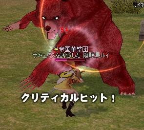 200800514-05.jpg