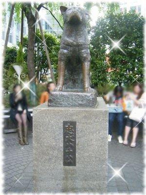 2008_04221391.jpg