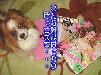 3.17雑誌