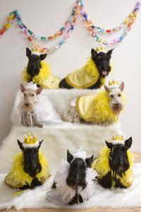 ♪HAPPY BIRTHDAY♪