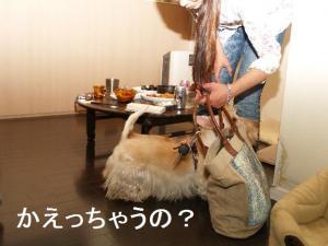 ♪かえっちゃうの??♪