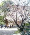 キャプテン(京大大学院卒)