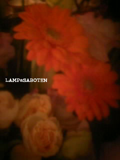rakudaflower01
