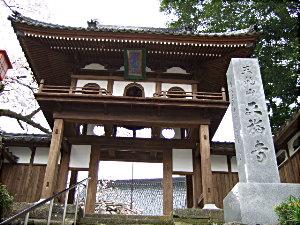 正福寺桜 007