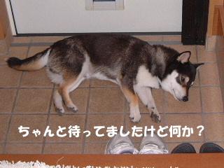 2007_0613_192019.jpg