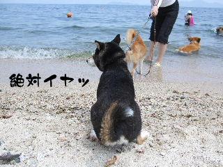 2008_0730_125526.jpg