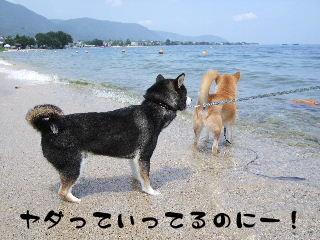 2008_0730_125546.jpg